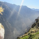 Lewis looks into the depths of the Colca Canyon
