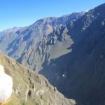 Lewis sees condors soaring through the Colca Canyon