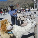 Lewis meets some traditional Peruvian animals