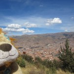 Lewis has a vantage point over the city of Cusco