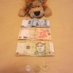 Lewis sees the main notes and coins in the Peruvian currency