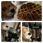 Lewis the Lion makes his first waffle for breakfast
