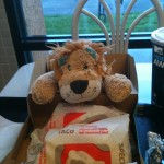 Lewis the Lion is introduced to American Mexican tacos and burritos