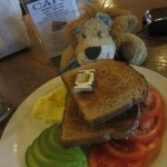 Lewis the Lion and a Californian breakfast
