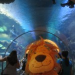 Lewis the Lion stands in the shark tunnel