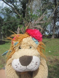 Even Lewis the Lion gets a hair accessory for the Melbourne Cup!