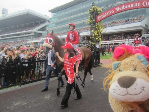 Winchester, the Lion Horse, leaves the Paddock