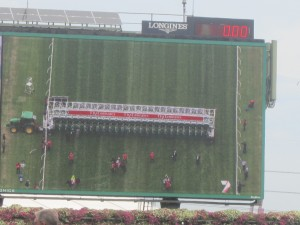 The big screen shows the horses lining up