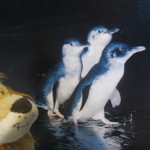 Lewis the Lion sees how big the Little Penguins are