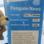 Lewis the Lion reads some up-to-date news on the Penguin Parade