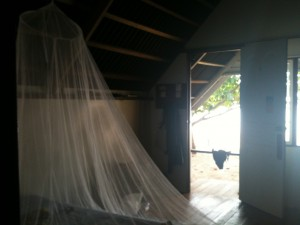 Helen sleeps with a mosquito net above her