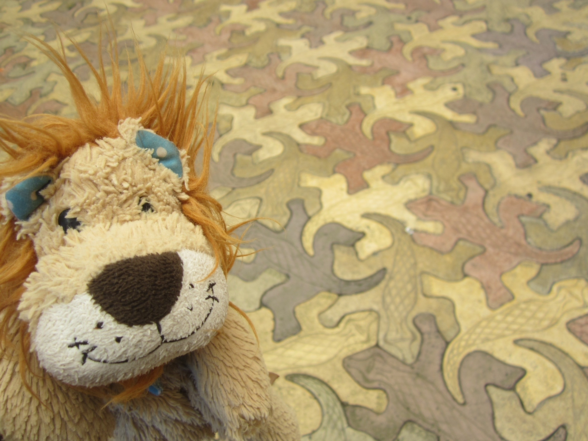 Lewis is edu tained at the tjapukai aboriginal cultural park lewis the lion admire the tessellated lizard tile floor dailygadgetfo Images