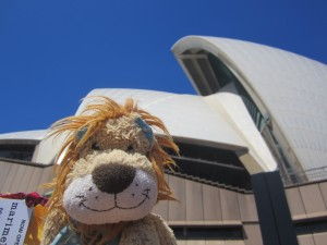 Lewis the Lion admires the iconic design of the Sydney Opera House