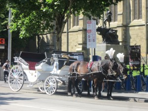 Horse and carriages for the tourists