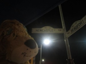 Lewis the Lion finds another 'Newcastle' in Perth