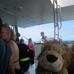 Lewis the Lion is very excited about the day ahead!