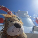 Lewis the Lion on the Dolphin Encounters boat