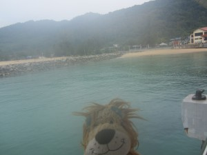 Lewis the Lion arrives in a hot and humid Tioman