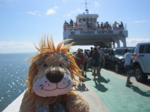 Lewis the Lion catches a ferry to Fraser Island