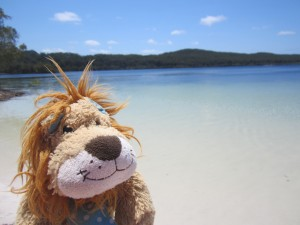 Fraser Island: the largest sand island in the world