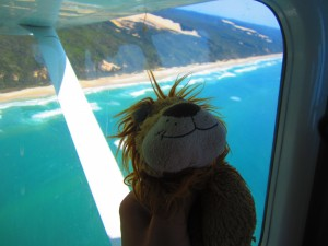 Lewis the Lion can see the blue sea and sandy beaches from the plane