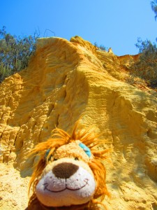Lewis the Lion admires the coloured sandy rocks of the Pinnacles