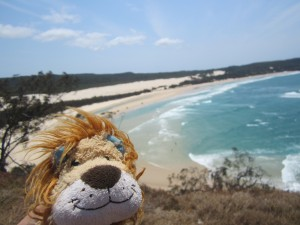 Lewis the Lion looks north from Indian Head