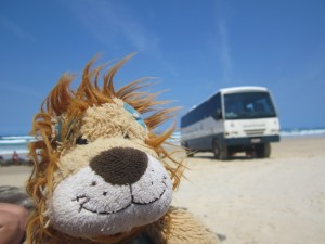 Lewis the Lion thinks that his coach is a sturdy affair!