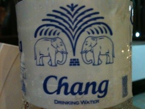 Chang is the Thai word for elephant