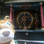 Lewis the Lion finds shrines to more Hindu gods