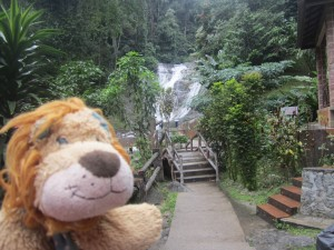 Lewis the Lion comes across locals bathing in a waterfall