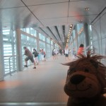 Lewis the Lion stands on the Skybridge
