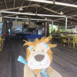 Lewis the Lion from his work station!