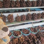 Lewis the Lion is relieved to take a break by this salat fruit stall