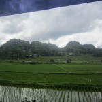 Looking out onto the rice paddies of Tana Toraja