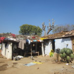 Clothes are hung on roof tops to dry