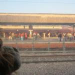 Watching the waiting passengers