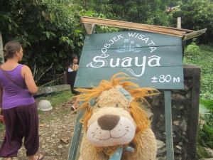 Lewis the Lion visits Suaya, the royal cliff burial site