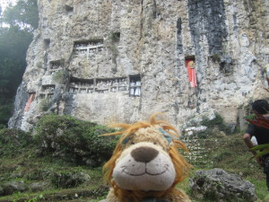 Lewis is fascinated to see this traditional Torajan cliff burial site