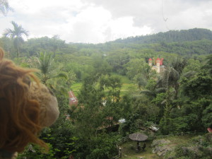 Lewis the Lion sees the Parish Church of Suaya from above