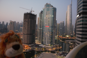 Lewis the Lion stands on the balcony from his new home