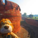 Lewis the Lion checks for crocodiles in the Agra Fort's moat!