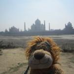 Lewis the Lion sees the Taj Mahal across the Yamuna River