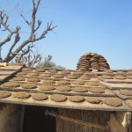 Cow dung insulates the roof