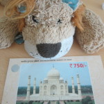 Lewis the Lion with his entrance ticket to the Taj Mahal