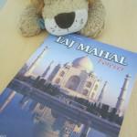 Lewis the Lion checks out his Taj Mahal postcard book