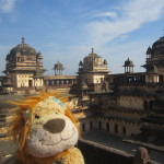 Lewis surveys the views from the top of the palace