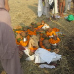 Offerings of coconut husks and carnation flowers