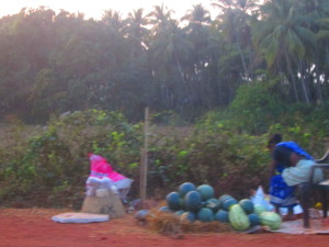 Watermelons and palm trees by the roadside