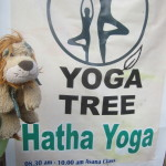 Lewis the Lion discovers Yoga in India